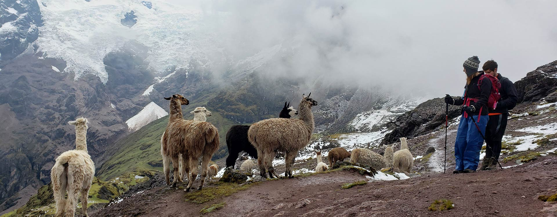 over andes travel salkantay